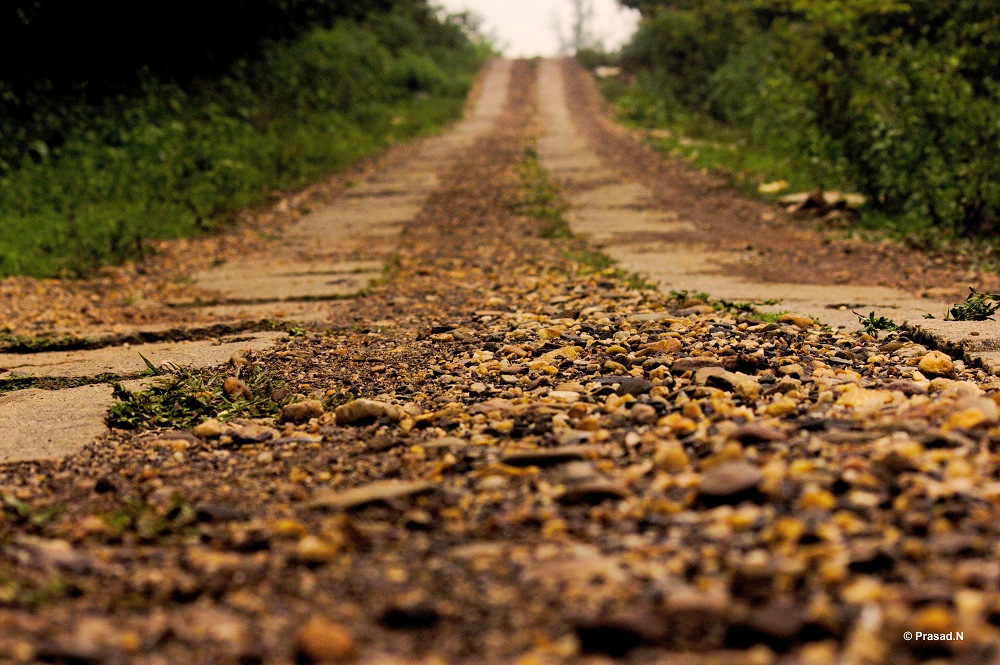 Title: Pebble Road, Bhagavathi Nature Camp, Kudremukh